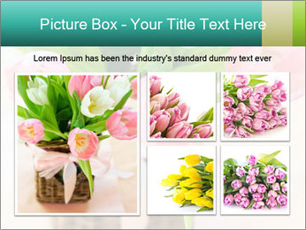 Pink tulips PowerPoint Template - Slide 19