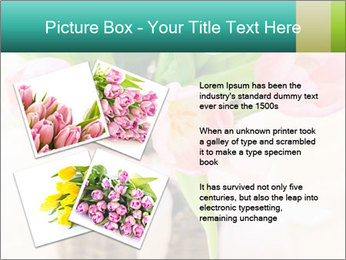 Pink tulips PowerPoint Template - Slide 23