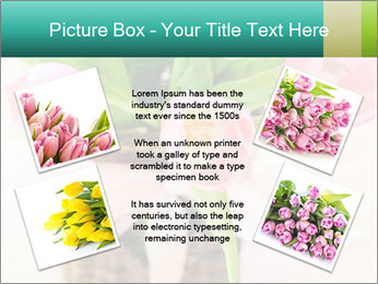 Pink tulips PowerPoint Template - Slide 24