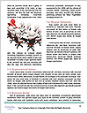 0000093214 Word Template - Page 4