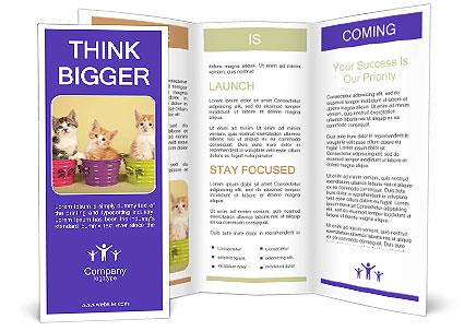 0000093215 Brochure Template