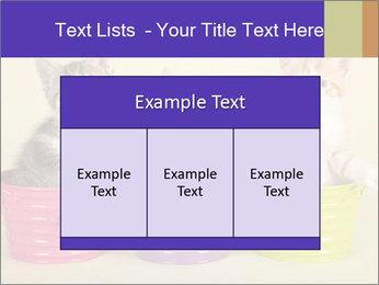 Moggie kittens PowerPoint Template - Slide 59