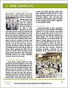 0000093219 Word Template - Page 3
