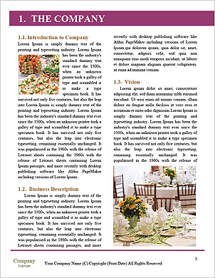 0000093223 Word Template - Page 3
