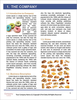 0000093226 Word Template - Page 3
