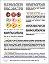 0000093226 Word Templates - Page 4