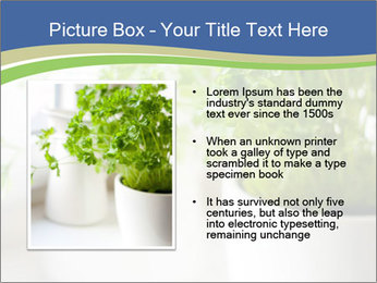 Green parsley PowerPoint Templates - Slide 13
