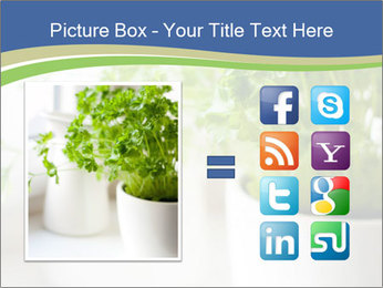 Green parsley PowerPoint Templates - Slide 21