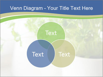 Green parsley PowerPoint Templates - Slide 33