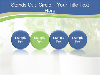 Green parsley PowerPoint Templates - Slide 76