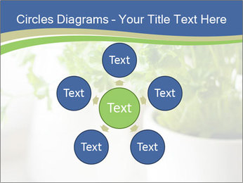 Green parsley PowerPoint Templates - Slide 78