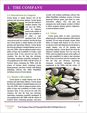 0000093233 Word Template - Page 3