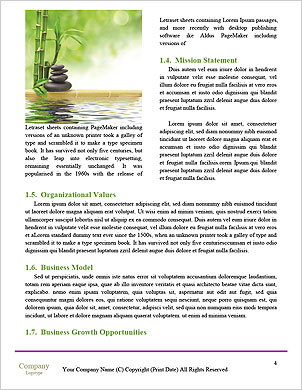 0000093233 Word Template - Page 4
