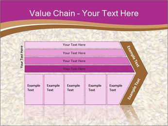 Malt macro PowerPoint Template - Slide 27