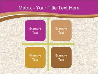 Malt macro PowerPoint Templates - Slide 37