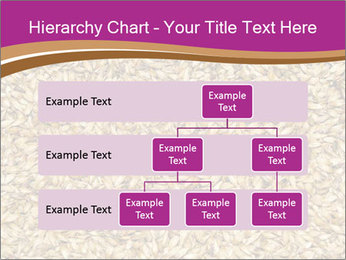 Malt macro PowerPoint Template - Slide 67