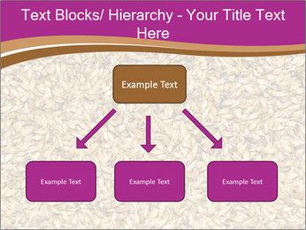 Malt macro PowerPoint Template - Slide 69