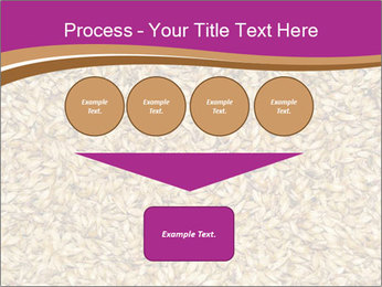 Malt macro PowerPoint Template - Slide 93