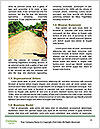 0000093247 Word Template - Page 4