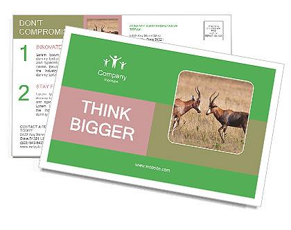 0000093263 Postcard Template