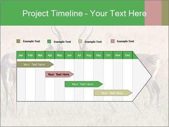 Pair of Blesbok PowerPoint Templates - Slide 25