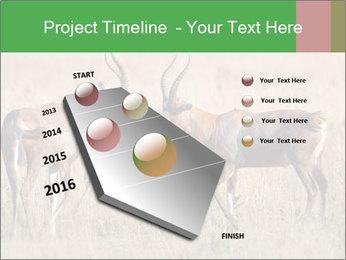 Pair of Blesbok PowerPoint Templates - Slide 26