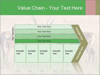 Pair of Blesbok PowerPoint Templates - Slide 27