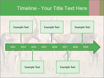 Pair of Blesbok PowerPoint Templates - Slide 28