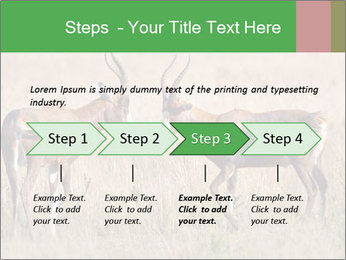 Pair of Blesbok PowerPoint Template - Slide 4
