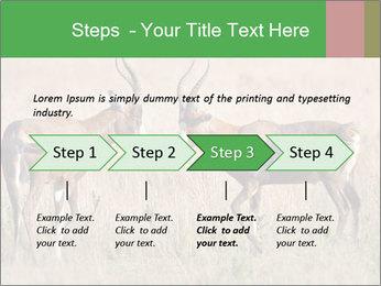 Pair of Blesbok PowerPoint Templates - Slide 4