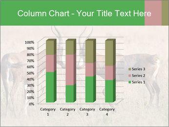 Pair of Blesbok PowerPoint Templates - Slide 50