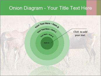 Pair of Blesbok PowerPoint Templates - Slide 61
