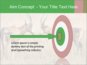 Pair of Blesbok PowerPoint Template - Slide 83