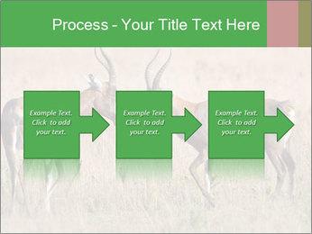 Pair of Blesbok PowerPoint Templates - Slide 88
