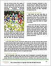 0000093267 Word Template - Page 4