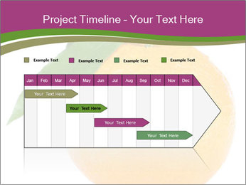 Ripe orange PowerPoint Template - Slide 25