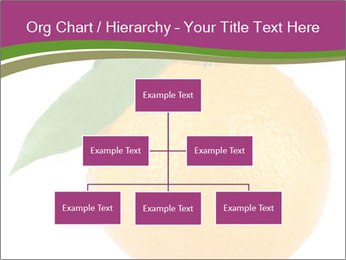 Ripe orange PowerPoint Template - Slide 66