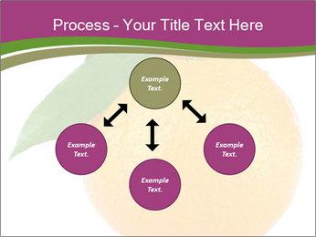 Ripe orange PowerPoint Template - Slide 91