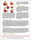0000093269 Word Templates - Page 4