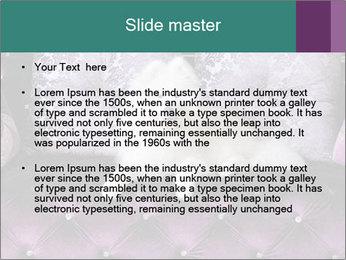 Samoyed dog PowerPoint Template - Slide 2
