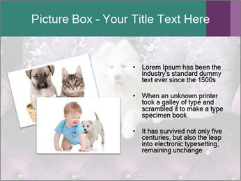 Samoyed dog PowerPoint Templates - Slide 20