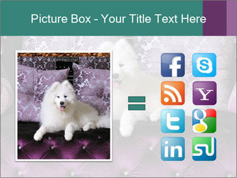Samoyed dog PowerPoint Templates - Slide 21