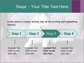 Samoyed dog PowerPoint Template - Slide 4