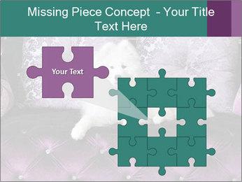 Samoyed dog PowerPoint Template - Slide 45