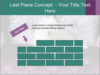 Samoyed dog PowerPoint Template - Slide 46
