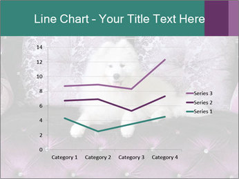Samoyed dog PowerPoint Templates - Slide 54