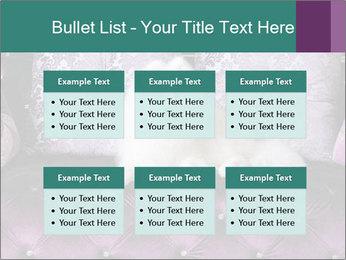 Samoyed dog PowerPoint Template - Slide 56