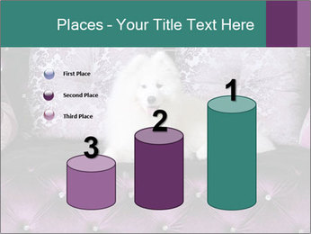 Samoyed dog PowerPoint Templates - Slide 65