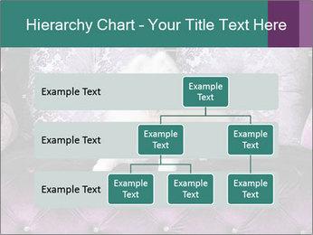 Samoyed dog PowerPoint Template - Slide 67