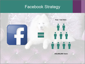 Samoyed dog PowerPoint Templates - Slide 7